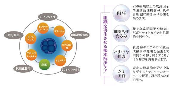 Hitokansai-1